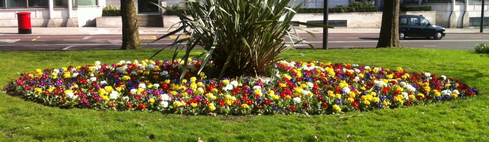 Park Lane Bedding Tulips (3)