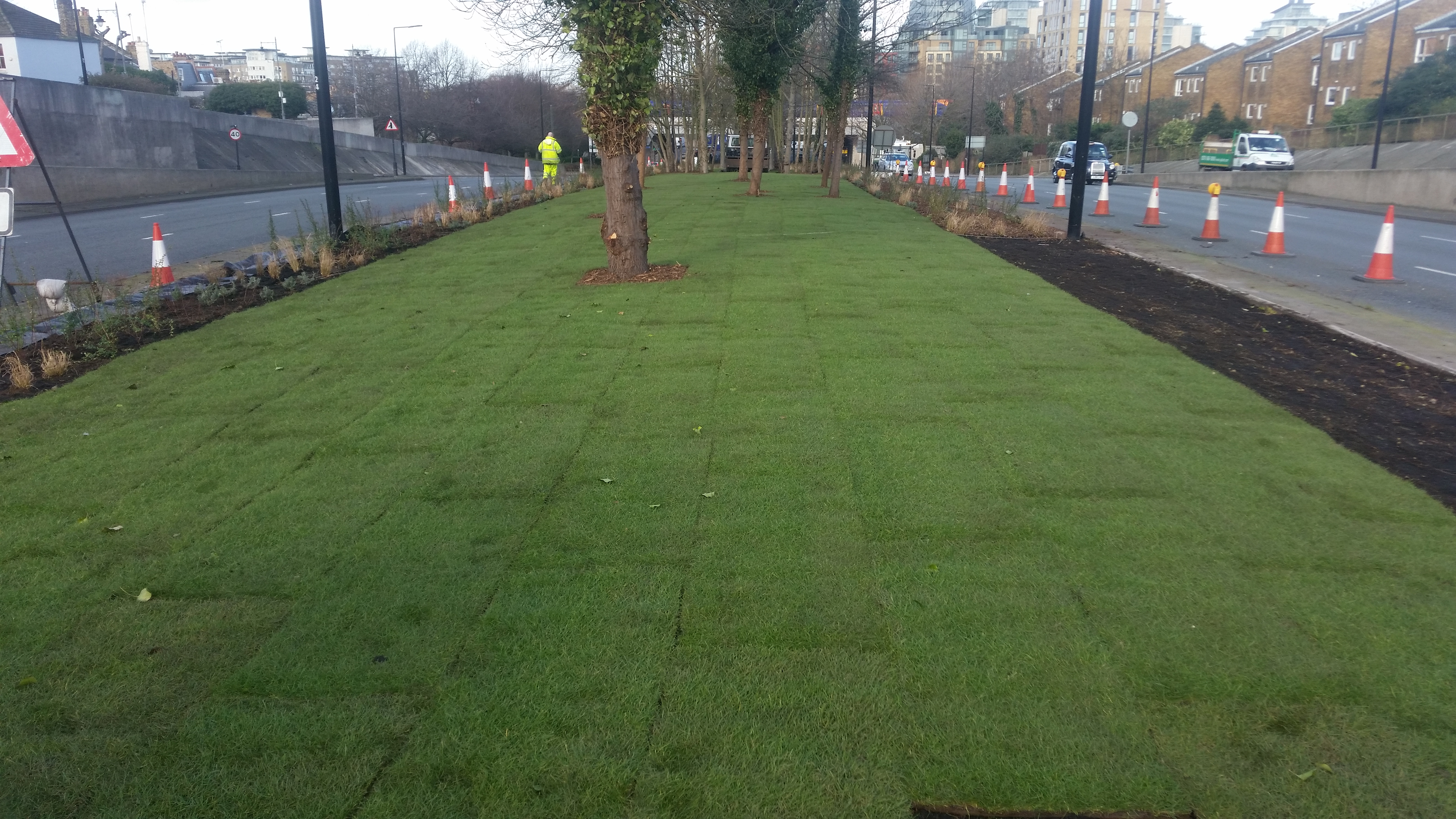 3. Trinity Road Wandsworth – grass laying