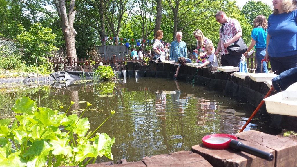 Stanley Primary Pond Opening - School Pond Installation